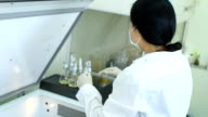 Scientist works experiment in laboratory video
