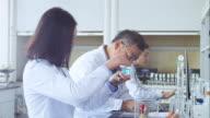 scientist works in modern biological lab video