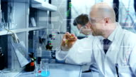 Scientists in modern laborator video