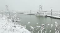 Scotch Pond Snow, Steveston video