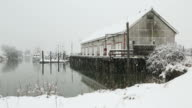 Scotch Pond, Steveston, BC Snow video