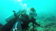 Scuba Diver underwater video