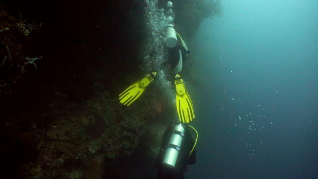 Scuba Divers underwater video