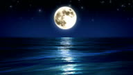 Sea and moon. Night sky. Looped animation. HD 1080. video