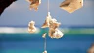 Sea decorations video