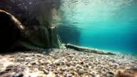 Sea floor video