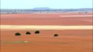 Sea Of Red Fields  - Aerial View - Orange Free State,  Mangaung Metropolitan Municipality,  Mangaung,  South Africa video