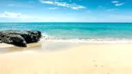 Sea shore with big stone video