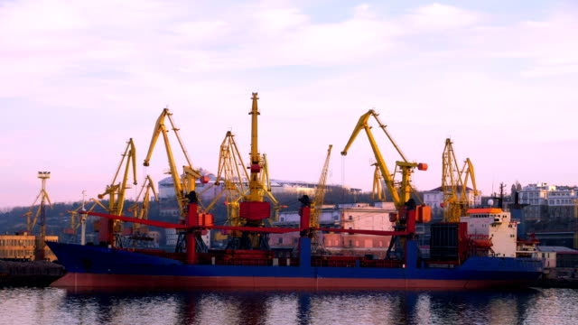 Sea Trading Port Activity. video