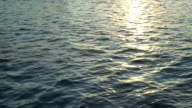 Sea water background with sun light reflection video