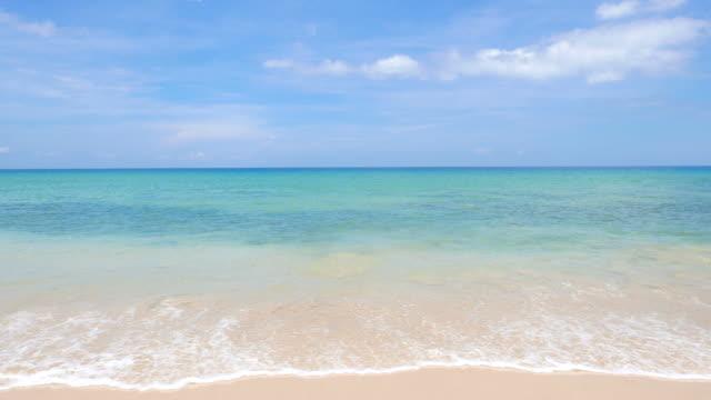 HD Sea wave on the beach video