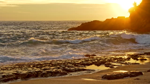Sea waves and rocky shore at sunset video