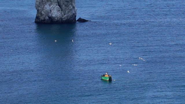 Seagulls flying around fishing boat video