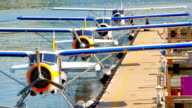 Seamless Loop Clip, Seaplanes Lined up at Dock video