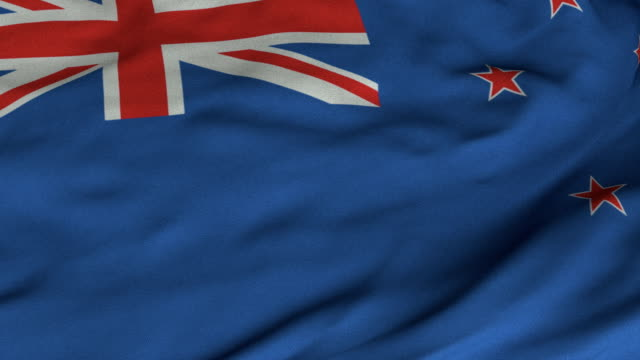 Seamless Waving New Zealand Flag with Fabric Texture video
