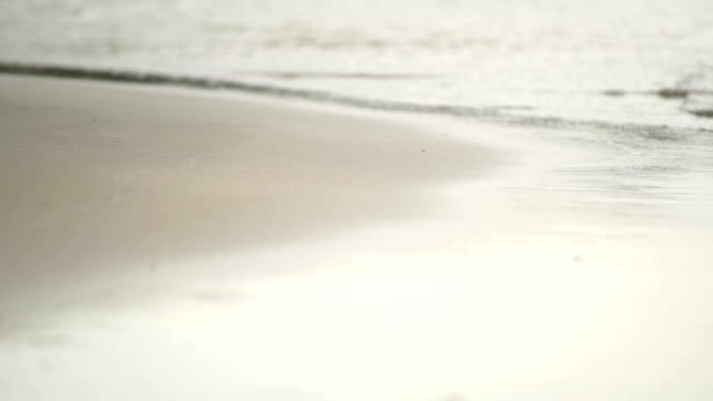 Seamlessly Waves On The Beach. video