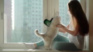 Search of antiallergens. Concept of cat hair as a source of allergy. video