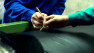 Search of defects and scars on leather material video