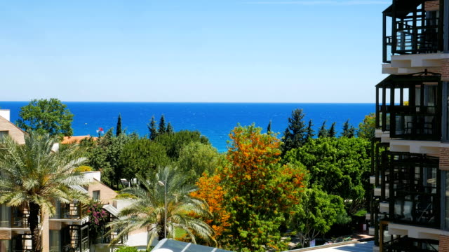 seascape in windy summer day, view from window, green and orange trees, palms, facade of building video