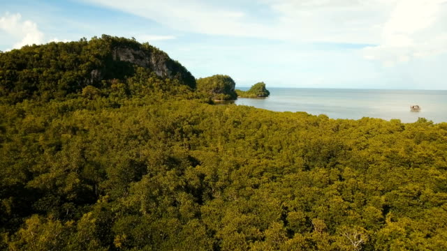 Seascape with tropical island, beach, rocks and waves. Bohol, Philippines video