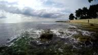 Seashore Waves video