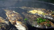 SLO MO Seasoning Grilled Fish With Parsley video