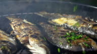 CU DS Seasoning Grilled Fish With Parsley video