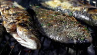 SLO MO Seasoning Grilled Fish With Salt video