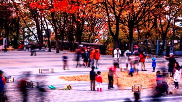 Seasons Of Korea video