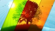 Seasons_V1_All 03 Background video
