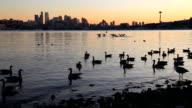 Seattle - Lake Union at dusk video