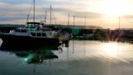 Seattle Marina at Sunset video