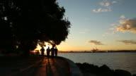 Seawall Jogging Group Sunrise, Vancouver video
