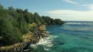 Secluded Private Hawaiian Beach video