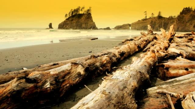 Second Beach video