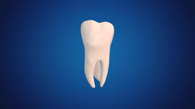 Second Molar video