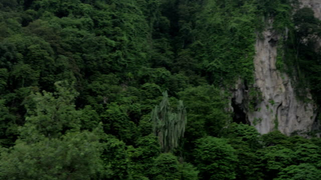 Seen green mountains and statue of Murugan at Batu Caves video