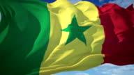 Senegal Flag video