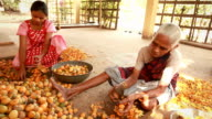 Senior and Young Indian Rural Women Peeling Betel Nut video