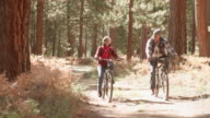 Senior black couple cycle past camera on a forest trail video