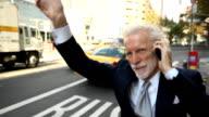 Senior Businessman Hails a Taxi video