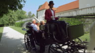 DS Senior couple and granddaughter riding in a carriage video