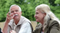 Senior couple at cafe outdoors video