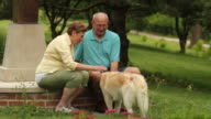 Senior couple at park petting their dog video