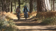 Senior couple cycling on forest trail, slow motion video
