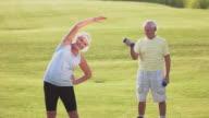 Senior couple doing exercises. video