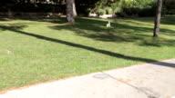 Senior Couple Enjoying Cycle Ride In Park video
