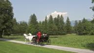 AERIAL Senior couple enjoying horse carriage ride around a lake video
