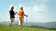 HD DOLLY: Senior Couple Enjoying The View video