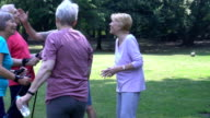 Senior couple holding hiking poles while communicating with friends video